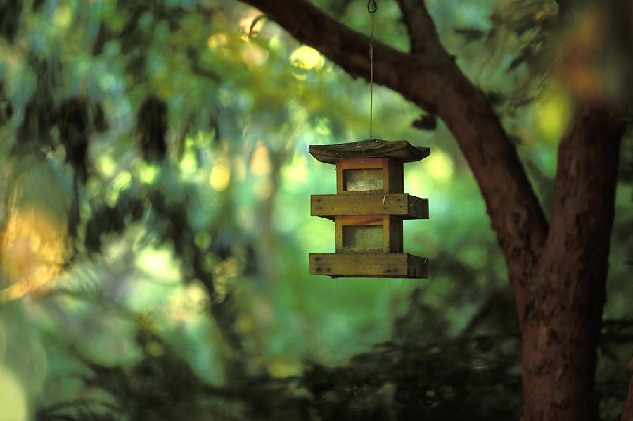 Oriental style bird feeder hanging from tree branch, Meerkerk Gardens, Greenbank, Whidbey Island, Washington