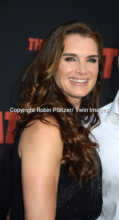 "Brooke Shields attends the New York Premiere of ""The Heat"" on June 23,2013 at the Ziegfeld Theatre in New York City. The movie stars Sandra Bullock, Melissa McCarthy, Demian Bichir, Marlon Wayans, Joey McIntyre, Jessica Chaffin, Jamie Denbo, Nate Corddry, Steve Bannos, Spoken Reasons and Adam Ray."