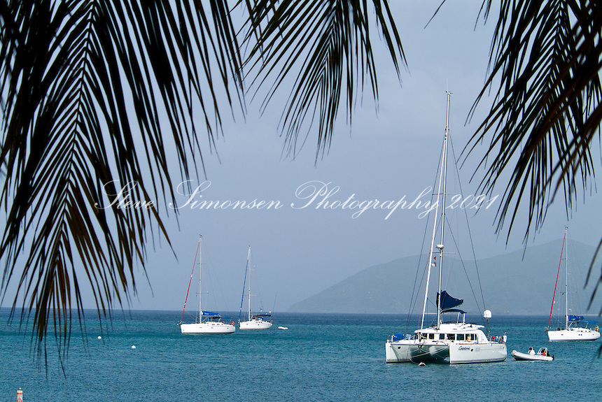 Sail boats and palms at Cane Garden Bay<br />