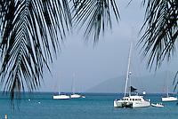 Sail boats and palms at Cane Garden Bay<br /> Tortola<br /> British Virgin Islands