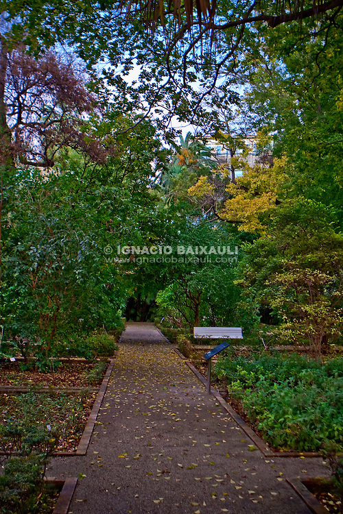 Jardín Botánico de Valencian / Botanic Garden Valencia