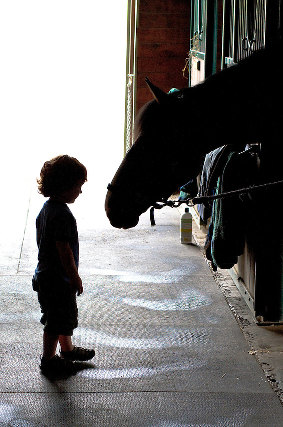 A young boy and a horse profiled in shadows in a barn in Brewster, New York.