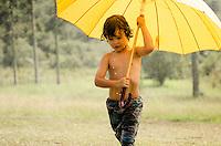Pura chuva - alta