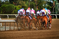 The field for the2012 Santa Anita Derby races in to the club house turn at Santa Anita Park in Arcadia California on April 7, 2012.