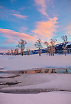 Yellowstone National Park, Wyoming: Colorful clouds reflected in the Lamar River at sunset in the Lamar Valley with distant cottonwood trees