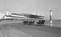 Narragansett Park horse racing 1940s - 1970s (in progress) - the GENE ALDO collection