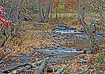 Fall scenic along a brook in the Poconoa, PA