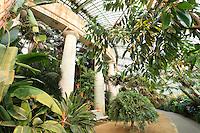 Belgique, Bruxelles, Laeken, le domaine royale du château de Laeken, les serres de Laeken durant la période d'ouverture au public au printemps, l'intérieur du jardin d'hiver // Belgique, Bruxelles, Laeken, the royal castle domain, the greenhouses of Laeken in spring inside the Winter Garden.