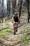 Mountain bikers descend the Tommy Creek Trail in North Central Washington's Entiat Valley.