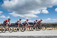 grupetto up the Puerto de la Morcuera<br /> <br /> Stage 18: Colmenar Viejo to Becerril de la Sierra (178km)<br /> La Vuelta 2019<br /> <br /> ©kramon