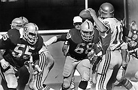 Seattle QB Jim Zorn rushed by#55 Matt Millen, and #68 Johnny Robinson..(1981 photo/Ron Riesterer)
