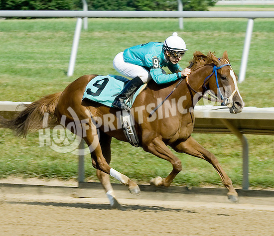 My Misty's Echo winning at Delaware Park on 6/23/10