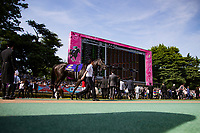 FUCHU,JAPAN-MAY 21: Soul Stirring walks on the parade ring before the Japanese Oaks at Tokyo Racecourse on May 21,2017 in Fuchu,Tokyo,Japan (Photo by Kaz Ishida/Eclipse Sportswire/Getty Images)