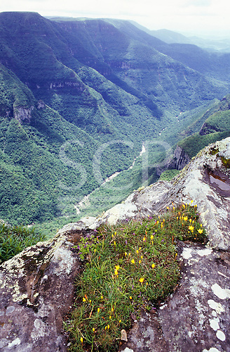 Fortaleza, Rio Grande do Sul State, Brazil. Spectacular view of the canyon in the Serra Geral National Park.
