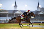 November 1, 2018: I Can Fly (GB), trained by Aidan P. O'Brien, exercises in preparation for the Breeders' Cup Mile at Churchill Downs on November 1, 2018 in Louisville, Kentucky. Alex Evers/Eclipse Sportswire/CSM