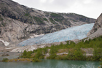 Gletscher, Festlandsgletscher, Eis, Nigardsbreen, Nigardbreen, Jostedalsbreen, Jostetal, Jostedalsbreen-Nationalpark, Gletscherzunge, Nationalpark, Norwegen. Nigardsbreen, Jostedalsbreen glacier, Jostedal Glacier, glacier tongue, snout of a glacier, glacial lobe, glacier, ice, Norway