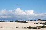 Ile Kangourou au sud d'Adelaide.Little Sahara au sud de l'ile.
