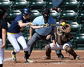 Michigan Wolverines Softball outfielder Nicole Sappingfield (15) at bat in front of umpire Rick Tumblestone and catcher Melissa Berouty during a game against the Bethune-Cookman on February 9, 2014 at the USF Softball Stadium in Tampa, Florida.  Michigan defeated Bethune-Cookman 12-1.  (Copyright Mike Janes Photography)