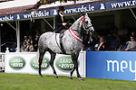 August 09, 2009: Sarah O'Brien and her horse Cutler in the parade of champions. Longines International Grand Prix. Failte Ireland Horse Show. The RDS, Dublin, Ireland.