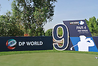 The 9th tee during the preview for the DP World Tour Championship at the Earth course,  Jumeirah Golf Estates in Dubai, UAE,  18/11/2015.<br /> Picture: Golffile | Thos Caffrey<br /> <br /> All photo usage must carry mandatory copyright credit (© Golffile | Thos Caffrey)