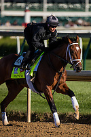 LOUISVILLE, KY - MAY 02: Patch gallops at Churchill Downs on May 02, 2017 in Louisville, Kentucky. (Photo by Alex Evers/Eclipse Sportswire/Getty Images)