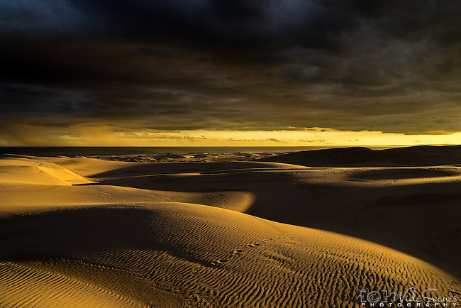 A gorgeous golden sunset and stormy skies over the Stockton Beach sand dunes in Port Stephens, Australia