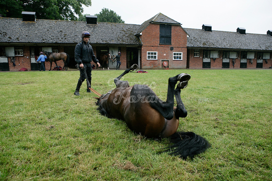 Ex professional soccer player and now a race horse trainer Mick Channon is pictured at the West Ilsley stables formerly owned by the Queen.