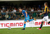 Arkadiusz Milik shoots and scores during the  italian serie A soccer match,between Hellas Verona and SSC Napoli  at  the Bentegodi    stadium in Verona  Italy , August 19, 2017