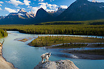 Two mountain goats stand on a small promontory overlooking a river in the Canadian Rockies. The sidelighting gives volume to the mountains in the distance and bathes the goats in very nice, dramatic light. Jasper National Park, Alberta, Canada.