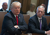 United States President Donald J. Trump makes opening remarks as he holds a Cabinet meeting in the Cabinet Room of the White House in Washington, DC on Wednesday, January 10, 2018.  Looking on from right is US Secretary of Defense Jim Mattis.<br /> Credit: Ron Sachs / Pool via CNP