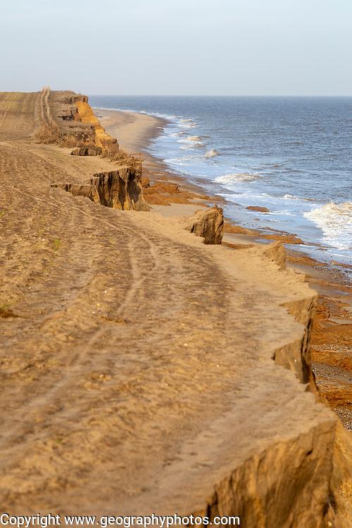 Soft crumbling cliffs coastal erosion near Benacre, North Sea coast, Suffolk, England, UK