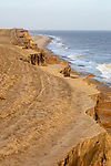 Soft crumbling cliffs coastal erosion near Benacre, North Sea coast, Suffolk, England, UK