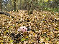Junge, Kind spielt im Herbst im Wald mit Laub, Blättern, Körper im Falllaub vergraben