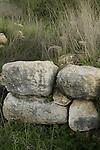 Israel, Shephelah, Tel Miqne, site of biblical Ekron, remains of the City Gate