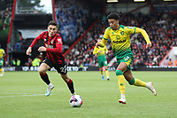 Harry Wilson of Bournemouth puts Jamal Lewis of Norwich City under pressure during the Premier League match between Bournemouth and Norwich City at Goldsands Stadium on October 19th 2019 in Bournemouth, England. (Photo by Mick Kearns/phcimages.com)<br /> Foto PHC/Insidefoto <br /> ITALY ONLY
