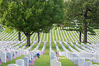 65095-02802 Gravestones at Jefferson Barracks National Cemetery St. Louis, MO