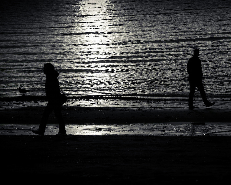 A silhouetted couple on a beach, walking away from each other. A seagull looks on.