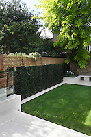 The green of the lawn, hedge and walnut tree appear more vividly next to the clean white paving and walls of the garden