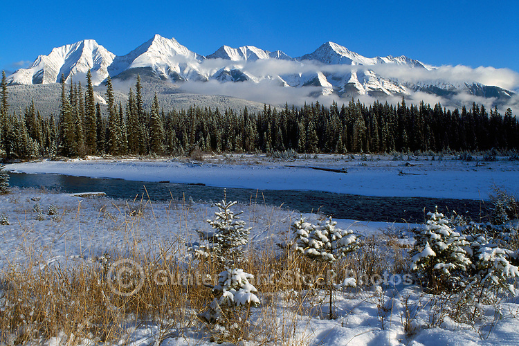 Koontenay national park rocky mountains bc canada pictures images kootenay national park canadian rockies bc british columbia canada snow covered sciox Image collections
