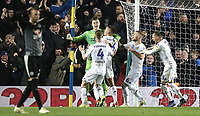 Leeds United's Bailey Peacock-Farrell roars in celebration and is mobbed by team-mates after saving a late penalty effort by Reading's Marc McNulty<br /> <br /> Photographer Rich Linley/CameraSport<br /> <br /> The EFL Sky Bet Championship - Leeds United v Reading - Tuesday 27th November 2018 - Elland Road - Leeds<br /> <br /> World Copyright &copy; 2018 CameraSport. All rights reserved. 43 Linden Ave. Countesthorpe. Leicester. England. LE8 5PG - Tel: +44 (0) 116 277 4147 - admin@camerasport.com - www.camerasport.com