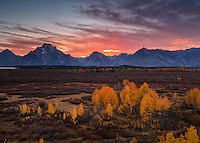 1786 Teton Autumn