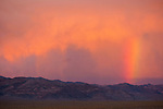 Rainbow with virga and pink clouds at sundown over the Gillis Range in central Nevada.