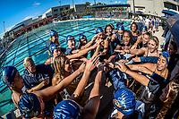 FIU Swimming 2018-2019 (Combined)