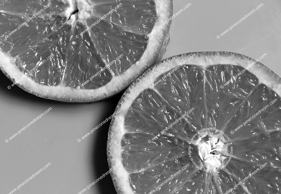 """Orange slices still life black & white stock image.<br /> <br /> View the gallery - """"Food"""" for the color version of this image."""