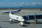 A Japan Airlines (JAL) Beoing 737 in the foreground, with an All Nippon Airlines (ANA) aircraft taxiing in the background