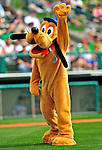 17 March 2009: Walt Disney Mascot Pluto waves to the fans prior to a Spring Training game between the Atlanta Braves and the New York Mets at Disney's Wide World of Sports in Orlando, Florida. The Braves defeated the Mets 5-1 in the Saint Patrick's Day Grapefruit League matchup. Mandatory Photo Credit: Ed Wolfstein Photo