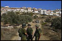 Israeli soldiers prevent from Palestinian villagers to harvest their olive trees in the limit between the Palestinian Town of Kufur Qadddum and the Jewish settlement of Qedumim.  More than 221,000 trees were uprooted between September 2000 and February 2003, the UN reports. In 2002 alone, it recorded 190 incidents of settler violence in the West Bank and Gaza Strip. Photo by Quique Kierszenbaum
