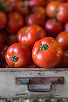 France, Aquitaine, Pyrénées-Atlantiques, Pays Basque, Saint-Jean-de-Luz, le marché , tomates  //  France, Pyrenees Atlantiques, Basque Country, Saint Jean de Luz, Tomatoes