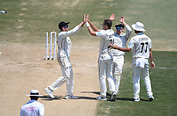25th November 2019; Mt Maunganui, New Zealand;  Tim Southee and team mates celebrate the  wicket of Ben Stokes  International test match day 5 of 1st test, New Zealand versus England;  at Bay Oval, Mt Maunganui, New Zealand.