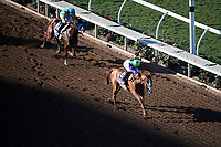 DEL MAR, CA - NOVEMBER 04: Good Magic #6, ridden by Jose Ortiz, on the home stretch while Solomini #2, ridden by Flavien Prat, tries to catch up on Day 2 of the 2017 Breeders' Cup World Championships at Del Mar Thoroughbred Club on November 4, 2017 in Del Mar, California. (Photo by Alex Evers/Eclipse Sportswire/Breeders Cup)